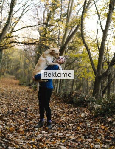Har du svært ved at komme i gang med de sunde gåture? Få gode råd her